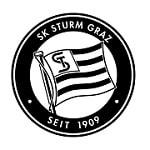 Штурм - logo