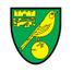 Норвич - logo