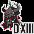 D13 - logo