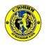 Слоним 2017 - logo