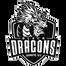 Black Dragons - logo