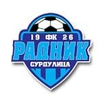 Радник Сурдулица - logo