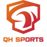 QH Sports Dota Series 2 - logo