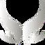 Xtreme Gaming - logo