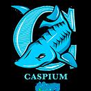 Caspium Clan - logo