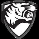 Dark Tigers - logo