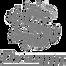 Dragon - logo