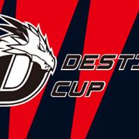 Destiny Cup Season 2 - logo
