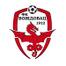 Вождовац - logo