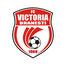 Виктория Бранешти - logo