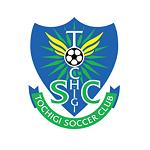 Тотиги - logo