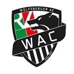 Вольфсберг - logo