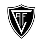 Академику де Визеу - logo