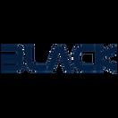 Team Black - logo