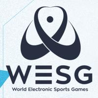2019 World Electronic Sports Games - logo