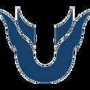 Team Unique - logo