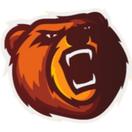 Bears - logo