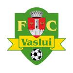 Васлуй - logo