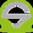 Team Singularity - logo