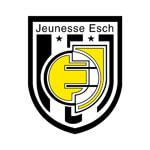 Женесс Эш - logo