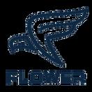 Team Flower.CN - logo