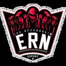 eSport Rhein-Neckar - logo