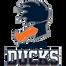 Playing Ducks  - logo