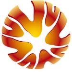 Австралия. Высшая лига - logo
