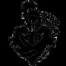 Dark Knight - logo