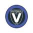 Вииторул - logo