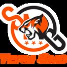 Team SMG - logo