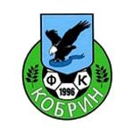 Атлант Кобрин - logo