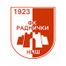 Раднички Ниш - logo