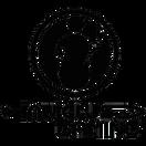 Invictus Gaming - logo
