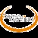 OPAA Gaming - logo