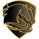Double Poney - logo