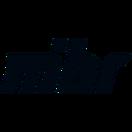 Made in Brazil - logo