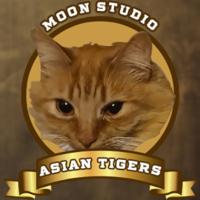 Moon Studio Asian Tigers - logo