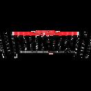 Team Unknown - logo